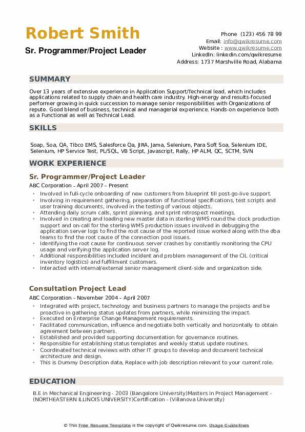 Project Lead Resume example