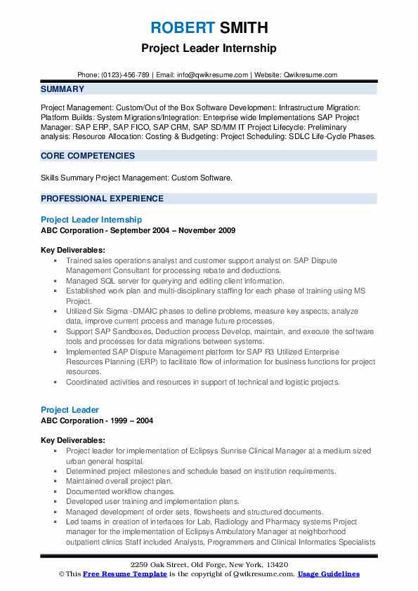 Project Leader Internship Resume Sample