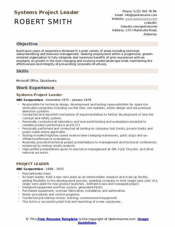 Systems Project Leader Resume Example