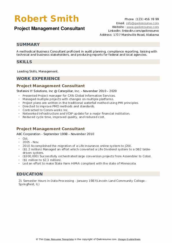 Project Management Consultant Resume example