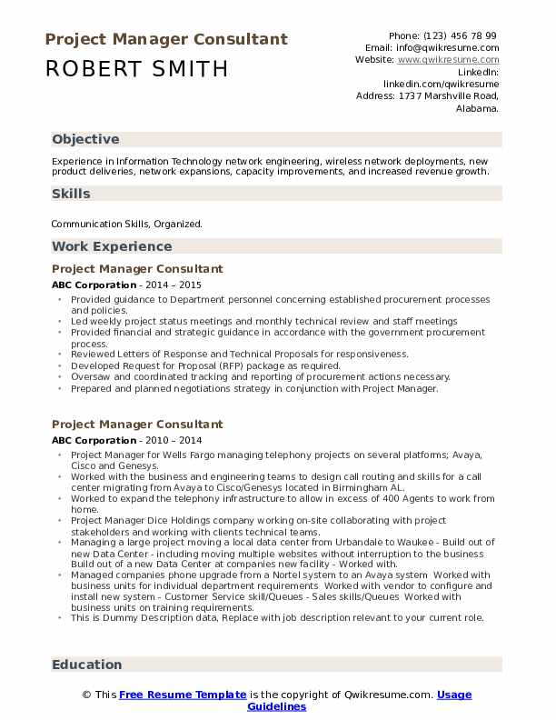 Project Manager Consultant Resume example