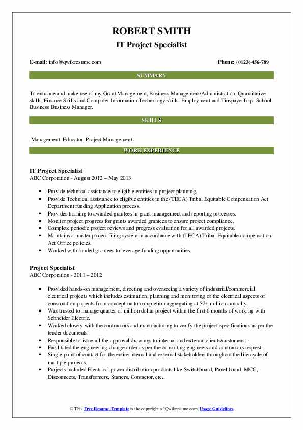 IT Project Specialist Resume Example
