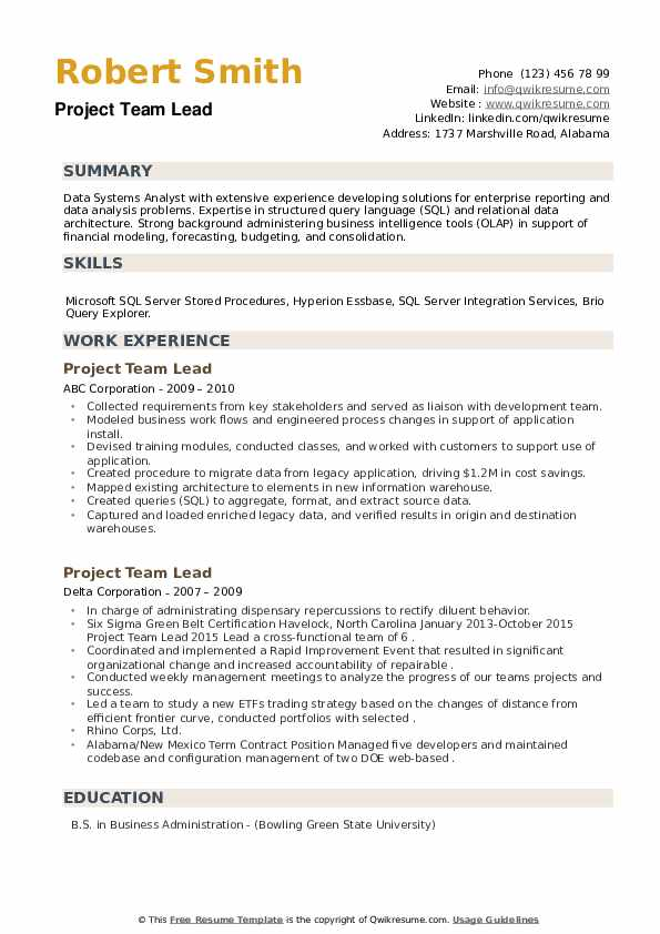 Project Team Lead Resume example