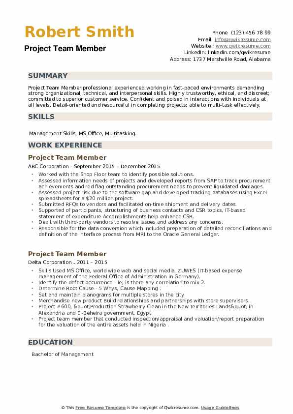 Project Team Member Resume example