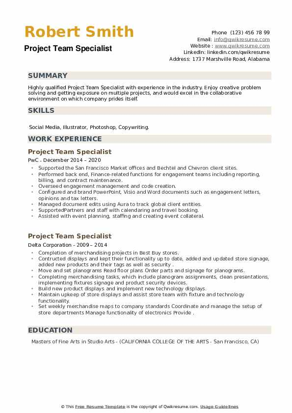 Project Team Specialist Resume example