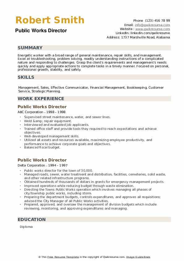 Public Works Director Resume example