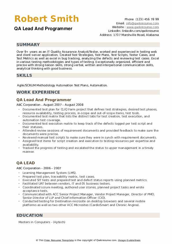 QA Lead And Programmer Resume Example