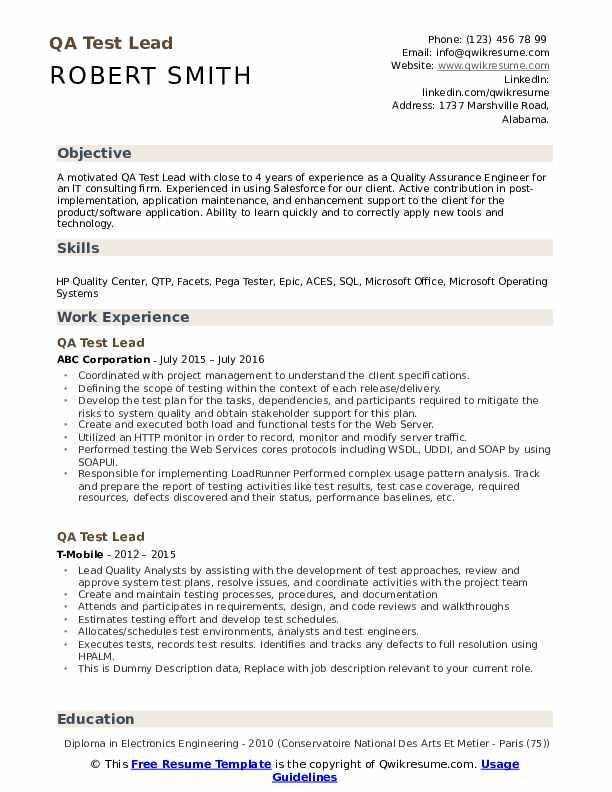 QA Test Lead Resume example