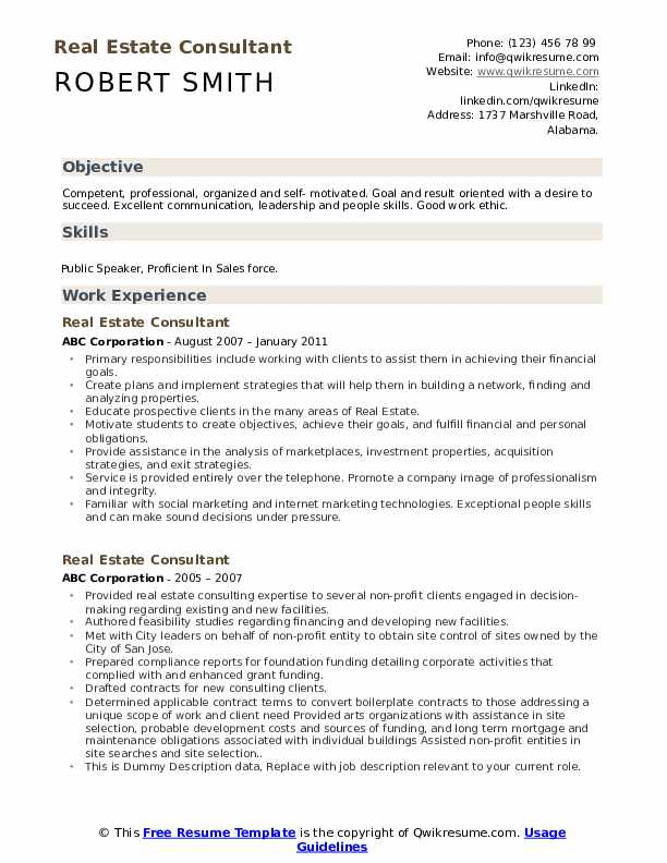 Real Estate Consultant Resume example