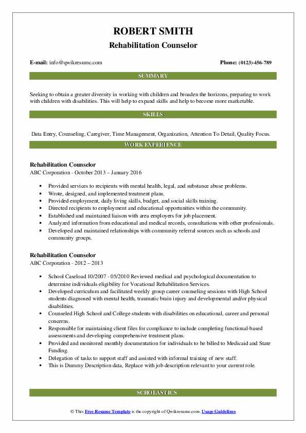 Rehabilitation Counselor Resume example