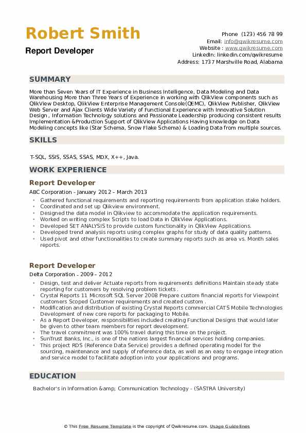 Report Developer Resume example