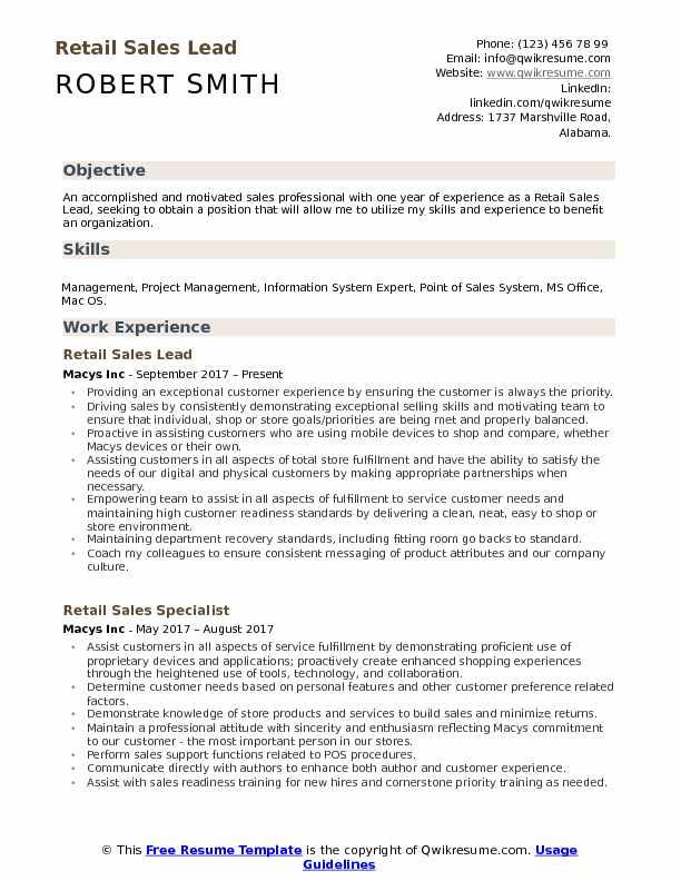Retail Sales Lead Resume Model