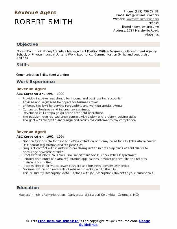 Revenue Agent Resume example