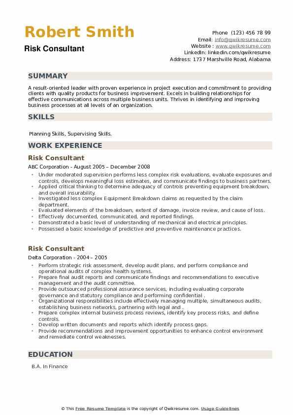 Risk Consultant Resume example