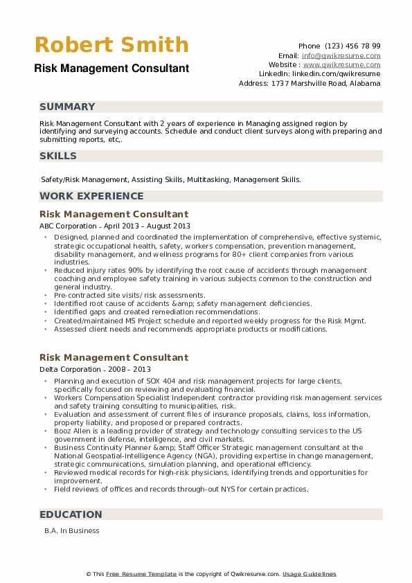Risk Management Consultant Resume example