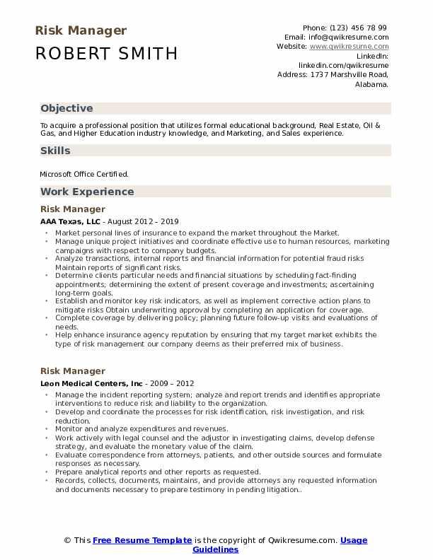 Risk Manager Resume Format