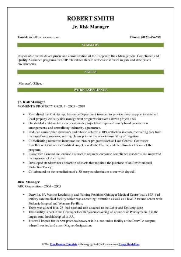 Jr. Risk Manager Resume Format