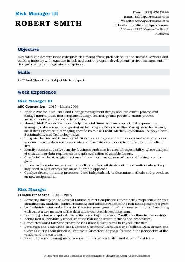 Risk Manager III Resume Sample