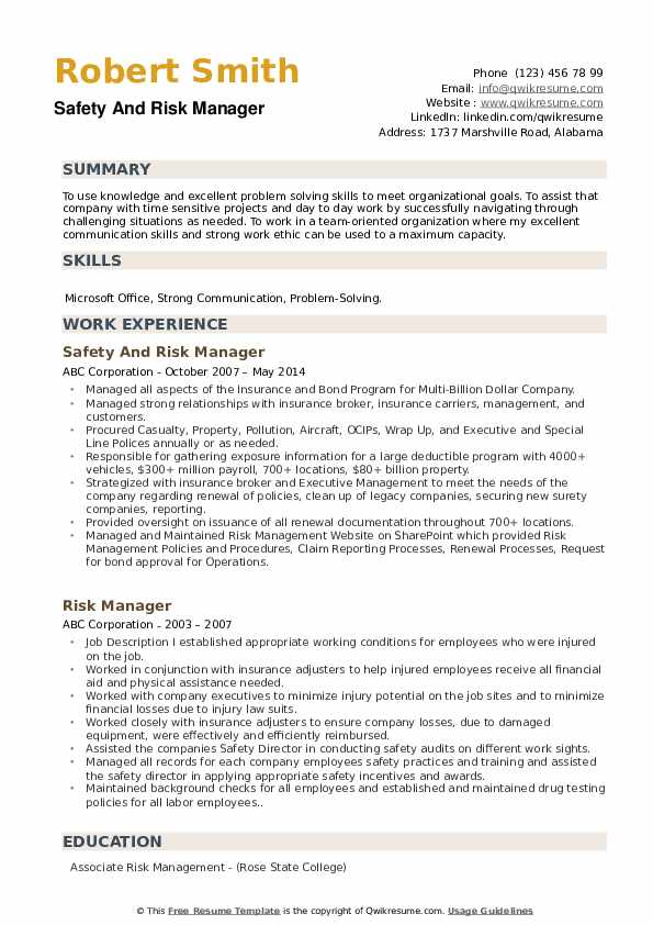 Safety And Risk Manager Resume Example