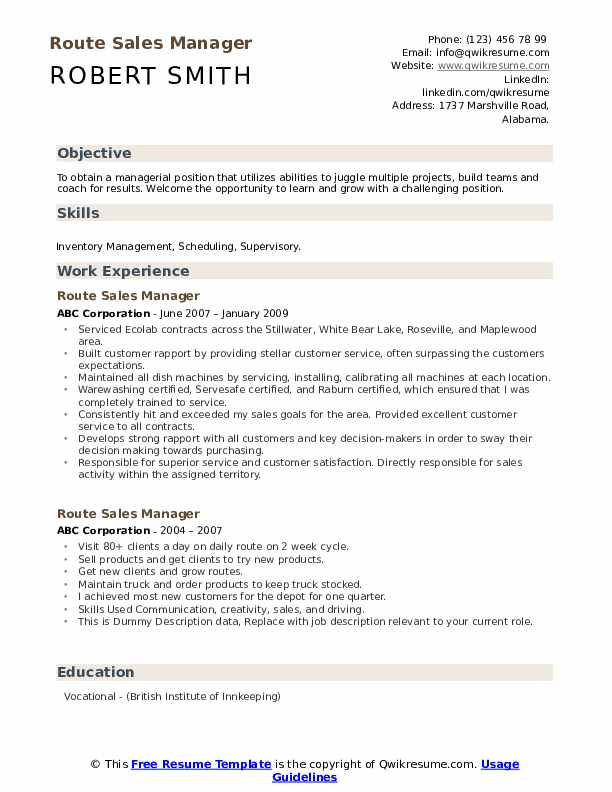 Route Sales Manager Resume example