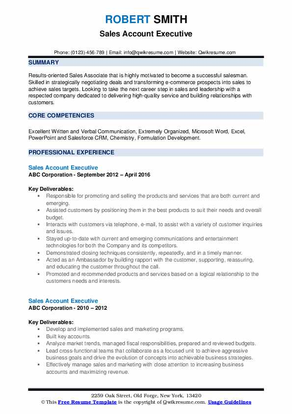 Sales Account Executive Resume example