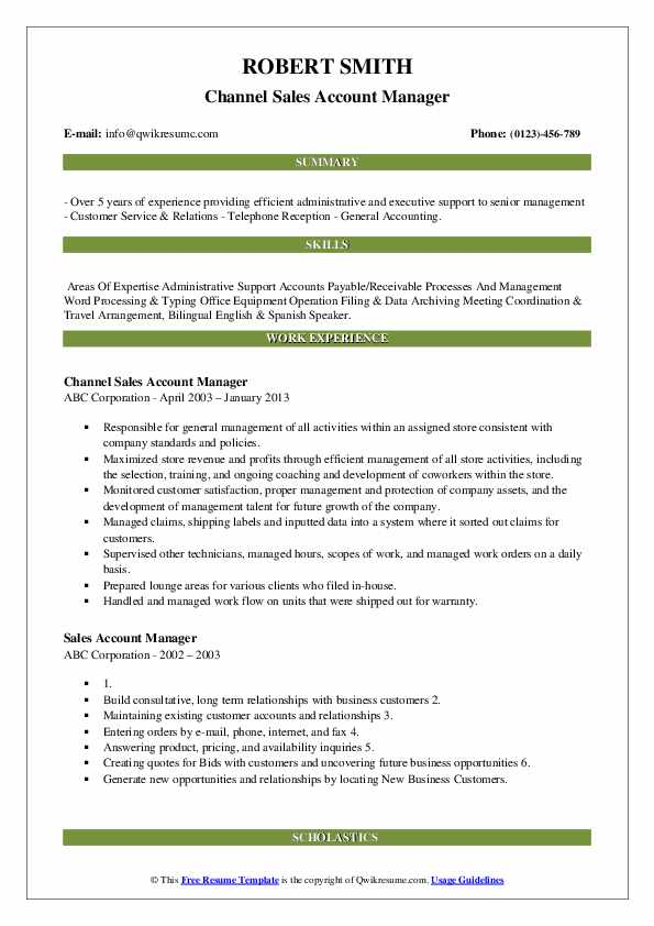 Channel Sales Account Manager Resume Example