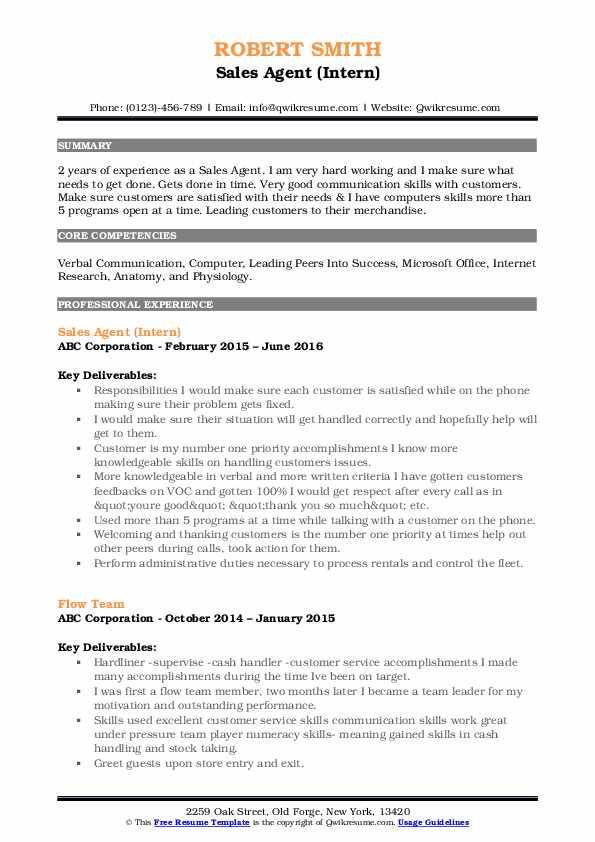 Sales Agent (Intern) Resume Format