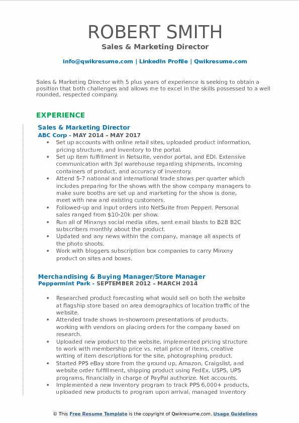 Sales & Marketing Director Resume Sample