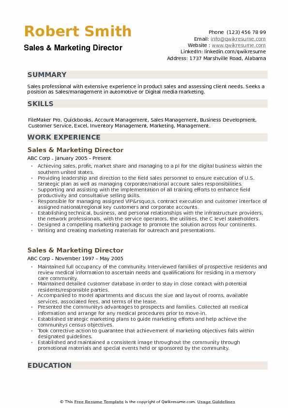 Sales and Marketing Director Resume example