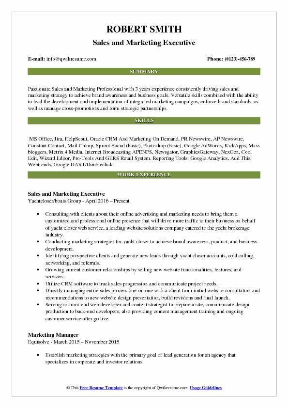 Sales and Marketing Executive Resume Template
