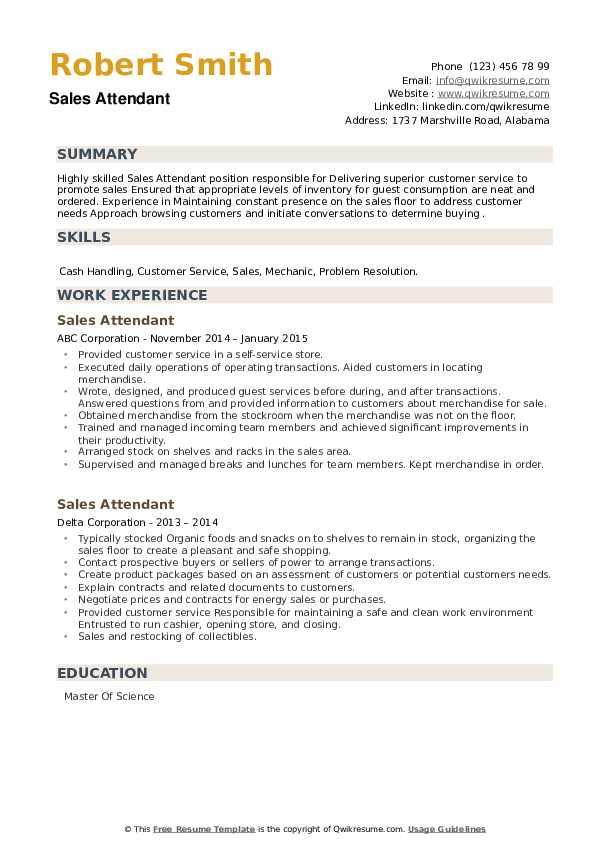 Sales Attendant Resume example