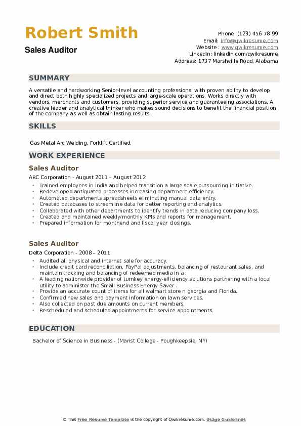 Sales Auditor Resume example
