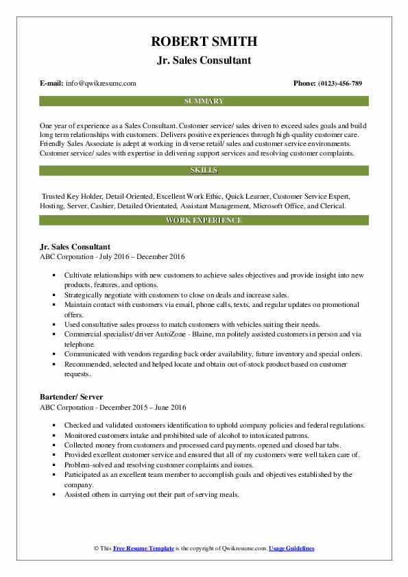 Jr. Sales Consultant Resume Example