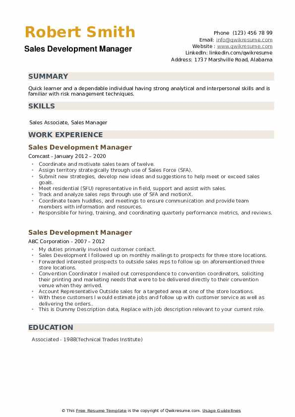 Sales Development Manager Resume example