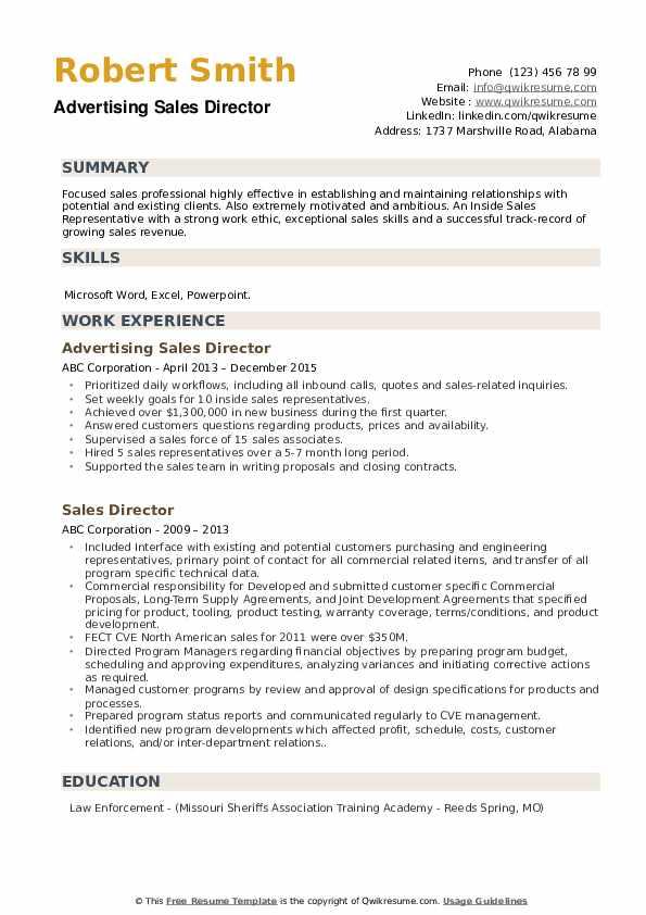 Advertising Sales Director Resume Format