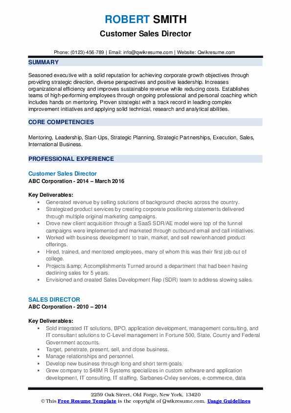 Customer Sales Director Resume Example