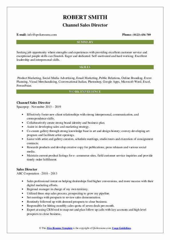 Channel Sales Director Resume Example