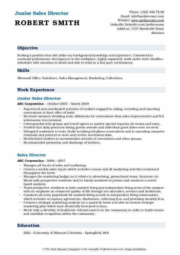 Junior Sales Director Resume Example