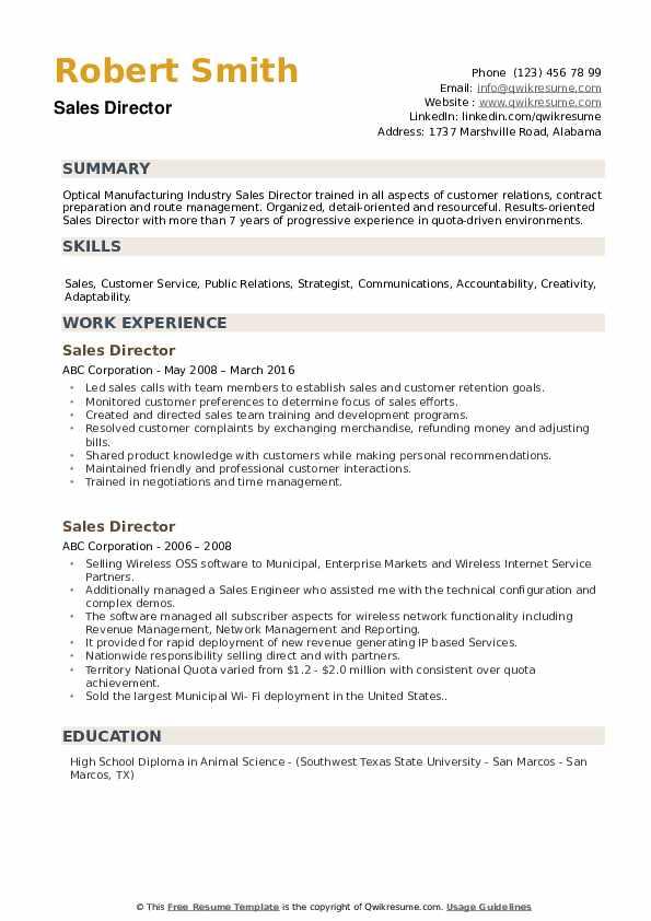 Sales Director Resume example