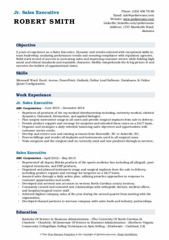 Jr. Sales Executive Resume Example