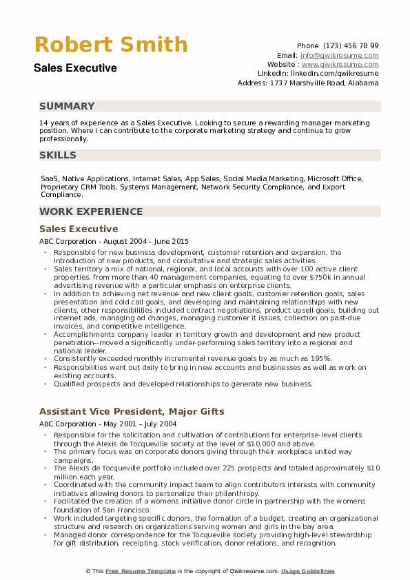 Sales Executive Resume example