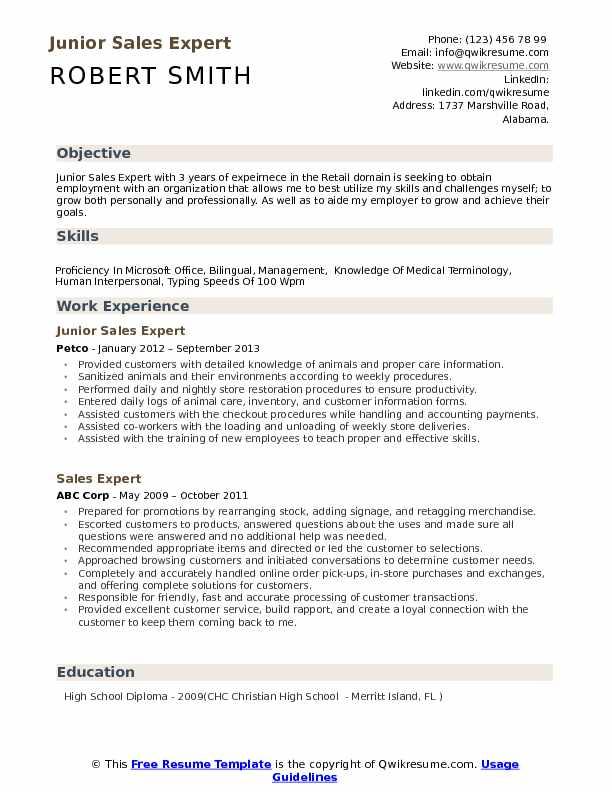 Junior Sales Expert Resume Example