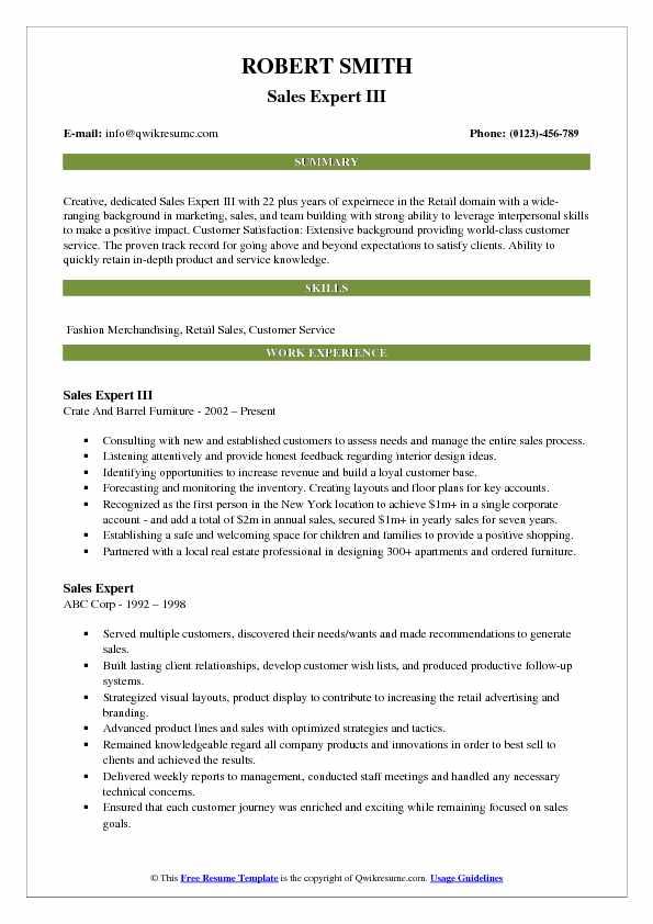 Sales Expert III Resume Example