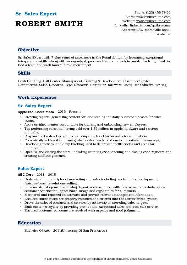 Sr. Sales Expert Resume Format