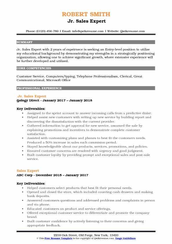 Jr. Sales Expert Resume Format