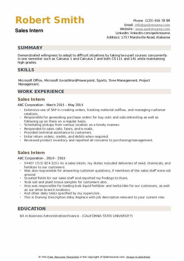 Sales Intern Resume example