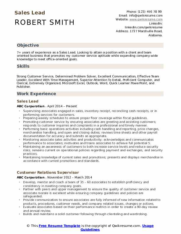 Sales Lead Resume Template