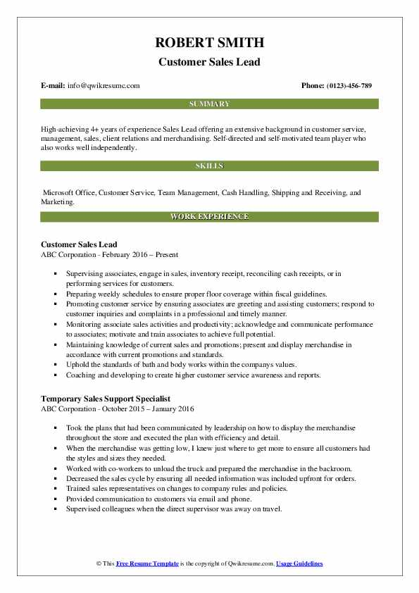 Customer Sales Lead Resume Format