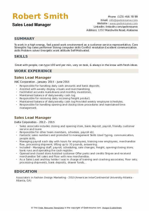 Sales Lead Manager Resume example