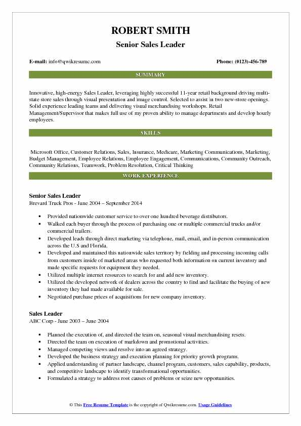 Senior Sales Leader Resume Format